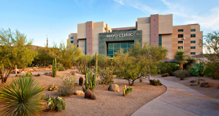 Mayo Clinic Alix School of Medicine: Acceptance Rate & Requirements