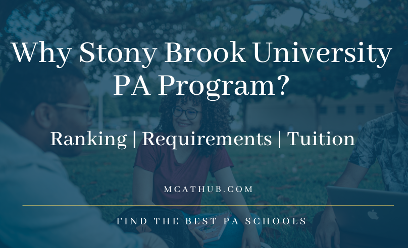 Why Stony Brook PA Program: Ranking | Requirements | Tuition